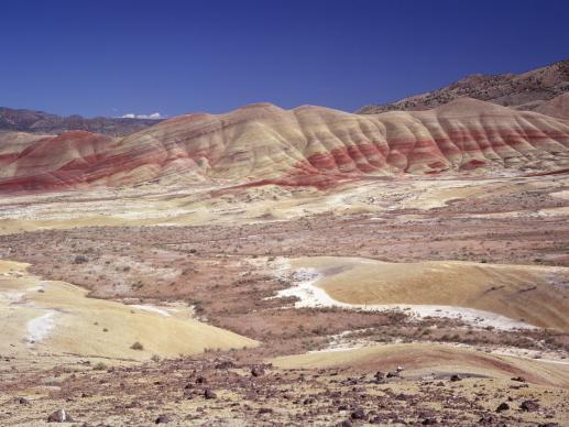 Konieczność pustyni - foto