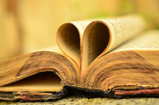 Serce z książki - foto