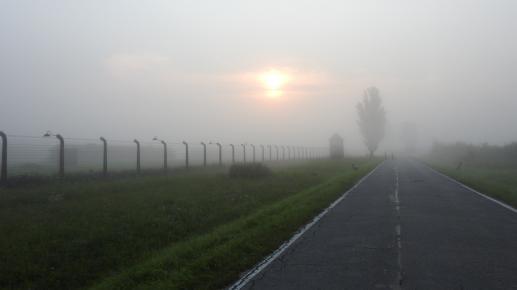Męczennik z Auschwitz - foto