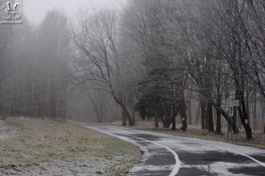 Boże Narodzenie - podwyższone ryzyko niebezpiecznych zachowań na drodze - foto