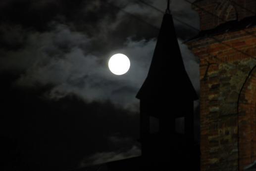 Wdzięczność ciemności - foto