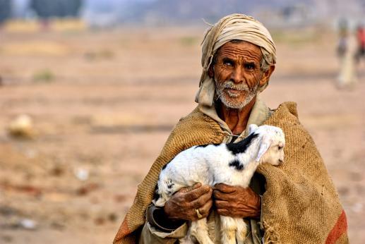 Na drodze dobrego pasterza - foto