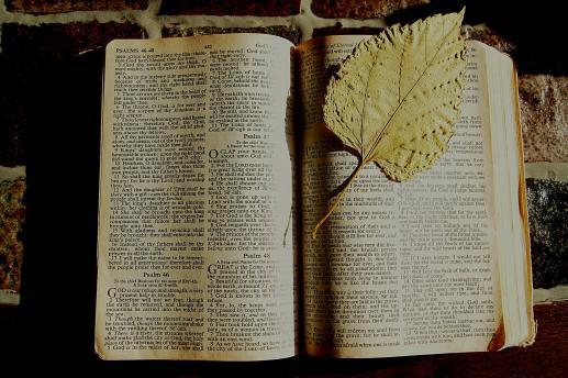 Fałszywe proroctwa Boga w Starym Testamencie? - foto