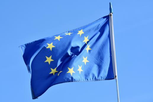Cegiełki budowli europejskiej - foto