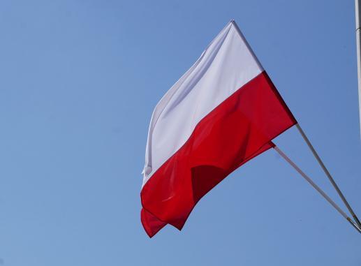 Polskie sprawy - foto