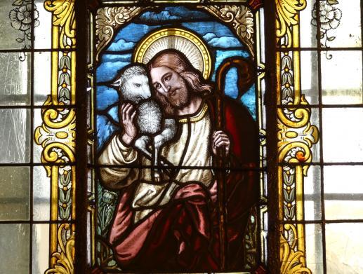 Dobry Pasterz, który leczy - foto