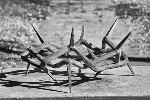 Ewangelia cierpienia - foto