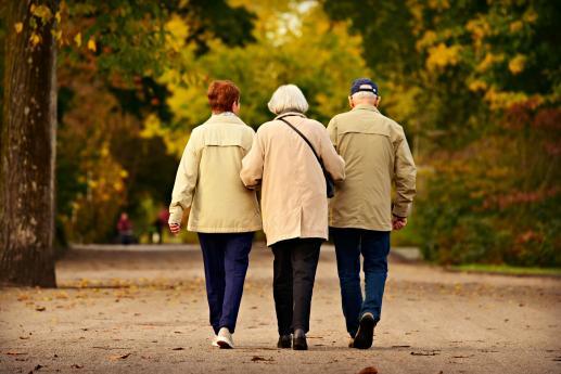 Dar starości - foto