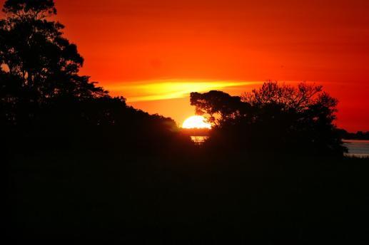 Querida Amazonia - foto